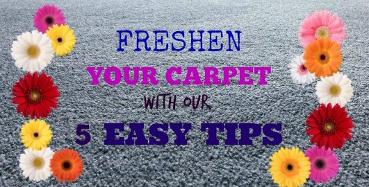 Freshen Your Carpet
