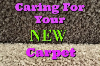 manchester carpet cleaning care